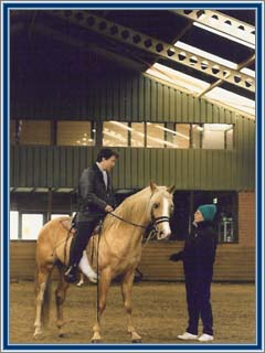 On Buster's Fair Leroy, I received advice from Diane Gueck, American TWH trainer from Cheveaux Stables in Oregon.